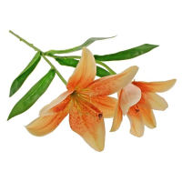 46cm Tiger Lily Spray