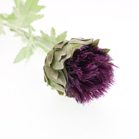 65cm Single Thistle