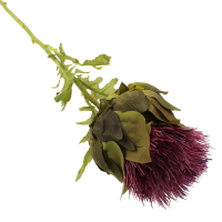60cm Single Thistle