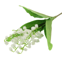 24cm Lily of Valley Bundle