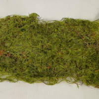 6 x 90cm Decorative Moss Roll