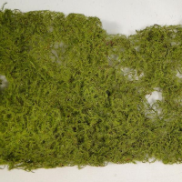 15 x 90cm Decorative Moss Roll