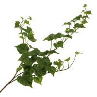 80cm Outdoor Irish Ivy Spray