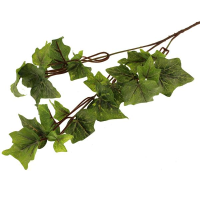 56cm Outdoor Blush Ivy Spray