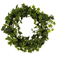 50cm Outdoor Ivy Wreath