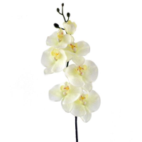 80cm Real Touch Orchid