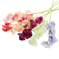 Sweet Pea Spray 49cm