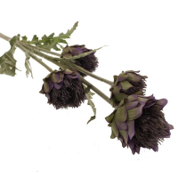 Cardoon Thistle Spray